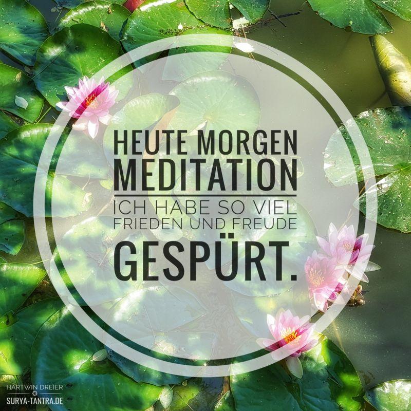 Seerosen, Meditation, Frieden und Freude
